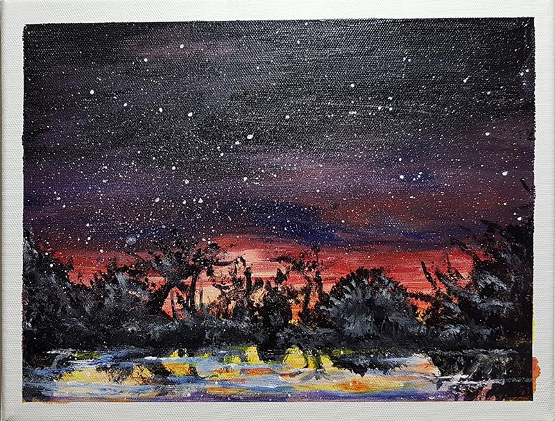 Nachts im Moor